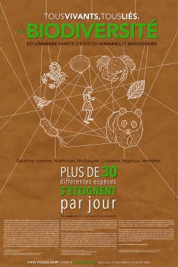 Create a visually attractive and informational poster about biodiversity // Création d'une affiche sur la biodiversité // Université Laval, 2013, Québec.